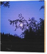 Summer Full Moon Wood Print by Garnett  Jaeger
