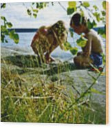 Summer Fun In Finland Wood Print