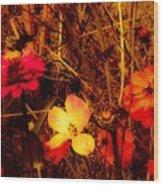 Summer Glow On Flowers Wood Print