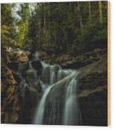 Summer Glow On The Falls Wood Print