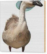 Summer Goose Wood Print