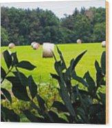 Summer Hay Wood Print