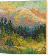 Summer High Country Wood Print