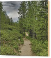 Summer Hike And Storm Clouds Wood Print