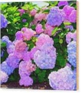 Summer Hydrangeas #2 Wood Print