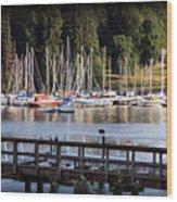 Summer In Deep Cove Wood Print by Tom Buchanan
