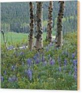 Summer In The Bighorns Wood Print