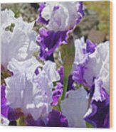 Summer Iris Garden Art Print White Purple Irises Flowers Baslee Troutman Wood Print
