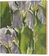 Summer Irises Wood Print
