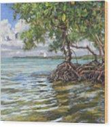 Summer Mangrove Melody Wood Print