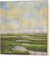 Summer Marsh Wood Print