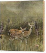 Summer Meadow Wood Print