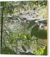 Summer Mountain Creek Wood Print