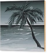Summer Night In Florida Wood Print