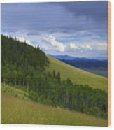 Summer On Kenosha Pass Wood Print