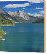 Summer On Medicine Lake Wood Print