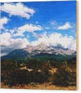Summer On Mt. Shasta Wood Print