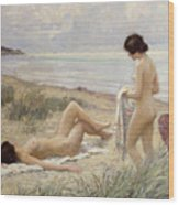 Summer On The Beach Wood Print by Paul Fischer
