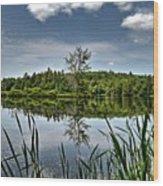 Summer On Waukeena Lake Wood Print