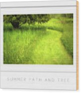 Summer Path And Tree Poster Wood Print