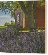 Summer Phlox Wood Print