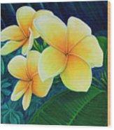 Summer Plumeria Wood Print