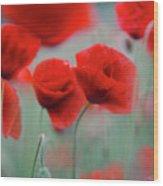 Summer Poppy Meadow 2 Wood Print