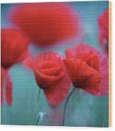 Summer Poppy Meadow 3 Wood Print