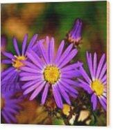 Summer Purple Wood Print