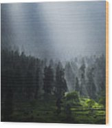 Summer Rain In The Indian Himalayas Of Kashmir Wood Print