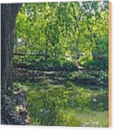 Summer Reflections At Lafayette Park Wood Print