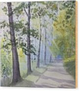 Summer Road Wood Print