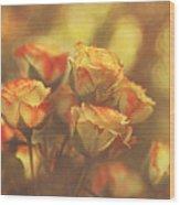 Summer Roses #1 Wood Print by Pat Abbott