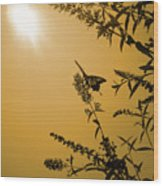 Summer Silhouette Wood Print