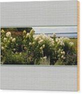 Summer Spledor Wood Print