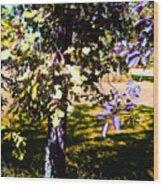 Summer Sulstice Wood Print