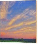 Retzer Nature Center - Summer Sunset #2  Wood Print