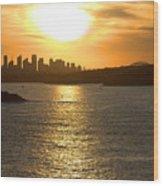 Summer Sunset In Sydney Wood Print