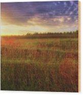 Summer Sunset - Waukesha Wisconsin  Wood Print