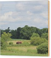 Summer Tractor In Field Corinna Maine Wood Print