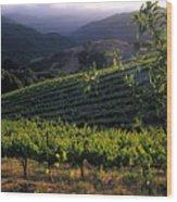 Summer Vineyard Wood Print