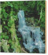 Summer Waterfall In West Milton Wood Print