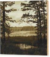 Summer Wetlands Wood Print