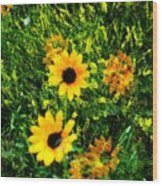 Summer Wildflower Dreams Wood Print