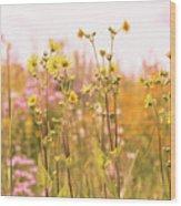 Summer Wildflower Field Of Sunflowers Wood Print