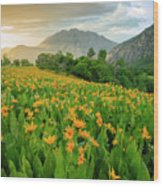 Summer Wildflowers Vertical Wood Print
