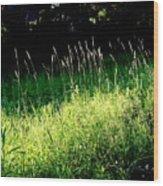 Summer Wind Wood Print