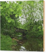Summer Woodland And The Patapsco River Maryland Wood Print