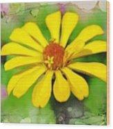 Summer Zinnia  Wood Print