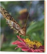 Summer's Sweet Nectar Wood Print